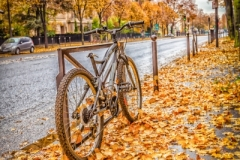 Travel photography Paris bike at Late rain fall