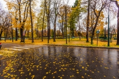 Travel photography Paris at Late rain autumn